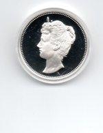 NEDERLAND PENNING WILHELMINA ZILVER PROOF 25 GRAM JE MAINTIENDRAI - [ 6] Monnaies Commerciales
