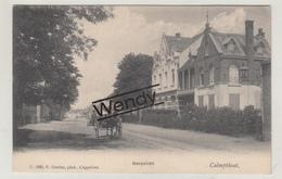 Kalmthout (Dorpzicht) Uitg. Hoelen N° 1895 - Kalmthout
