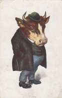 Man W Huge Cow Or Bull Head Old Postcard Surrealisme 1923 - Animali Abbigliati
