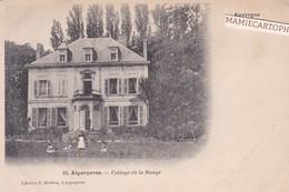 AIGUEPERSE - Dépt 63 - Cottage De La Mange  - 1905 - Aigueperse