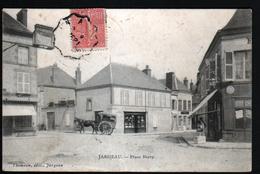 45, Jargeau, Place Berry - Jargeau