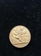 Médaille En Bronze De L'école Nationale Des Beaux-arts De Dijon Par Dubois -poinçon Sur La Tranche - Professionali / Di Società
