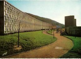 57 - FORBACH - ÉCOLE PRIMAIRE DU WIESBERG - Forbach