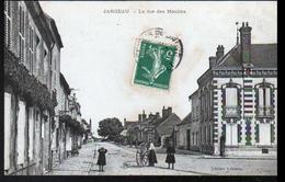 45, Jargeau, La Rue Des Moulins - Jargeau