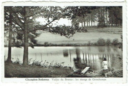 Champlon Ardennes. Vallée Du Bronze. Les étangs De Grinchamps. - Tenneville