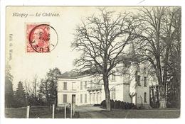 Blicquy ( Leuze-en-Hainaut ) Le Château. **** - Leuze-en-Hainaut
