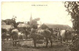St-Urbain - Le Battage Du Blé - France