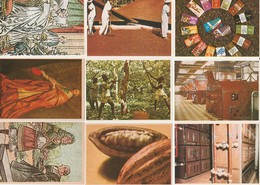 CHOCOLAT POULAIN - LOT DE 10 IMAGES SERIE 12 CONNAISSANCE DU CHOCOLAT - Vieux Papiers