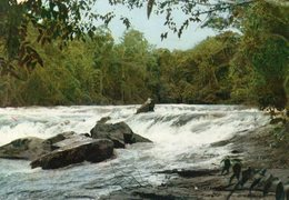 GUYANE-  LES TROIS SAUTS SUR L'OYAROCK - Guyane