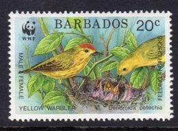 BARBADOS - 1991 ENDANGERED SPECIES WWF 20c WARBLER FINE MNH ** SG 949 - Barbados (1966-...)