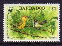 BARBADOS - 1991 ENDANGERED SPECIES WWF $1 WARBLER FINE MNH ** SG 951 - Barbados (1966-...)