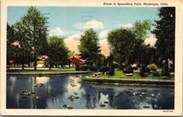 Oklahoma Muskogee Scene In Spaulding Park 1952 Curteich - Muskogee