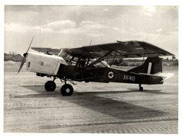 AUSTER AOP9    ++  21 * 15 CM - Aviación