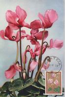 Grèce Carte Maximum Fleurs 1958 Cyclamen 667 - Maximum Cards & Covers