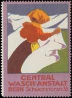 Bern: Central Wasch-Anstalt Reklamemarke - Vignetten (Erinnophilie)