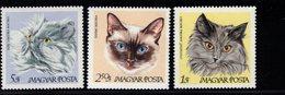 744305726 POSTFRIS  MINT NEVER HINGED EINWANDFREI SCOTT 1880 - 1887 DOMESTIC CAT - Hongrie