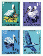 Ref. 82223 * NEW *  - BULGARIA . 1984. PROTECTED FAUNA; DALMATIAN PELICAN. FAUNA PROTEGIDA. PELICANO CE�UDO - Bulgaria