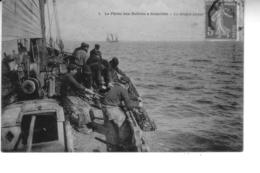 La Pêche Aux Huîtres à GRANVILLE  La Drague Pleine - Granville