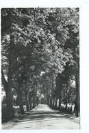 Malmedy Route Vers Beverce - Malmedy