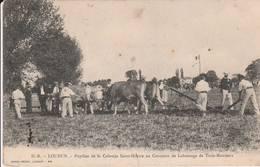 Loudun - Pupilles De La Colonie De Saint Hilaire Au Concours De Labourage De  Trois-Moutiers - Scan Recto-verso - Loudun