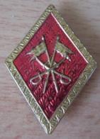 Insigne Militaire (?) En Métal Doré Embouti Et Coloré - 2 Drapeaux Et 2 Sabres Croisés - A Identifier - Armée De Terre