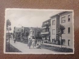 Wenduyne Avenue De L'Est - Cartes Postales