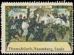 Naumburg: Kampf Um Froschweiler Reklamemarke - Cinderellas