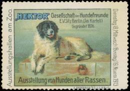 Berlin: Ausstellung Von Hunden Aller Rassen Reklamemarke - Cinderellas