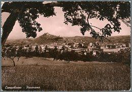°°° Cartolina N.121 Termoli Panorama Viaggiata °°° - Campobasso