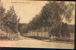 ASSENOIS « Une Allée Du Château » - Ed. Desaix, Bxl (1928) - België
