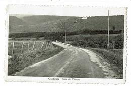 CPA - Carte Postale --BELGIQUE - Gochenée  Bois De Cheneu VM1921 - Doische