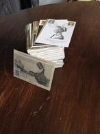 LOT De 319 Cartes Maximum Pays Divers ( Dont France ) - Sammlungen (im Alben)