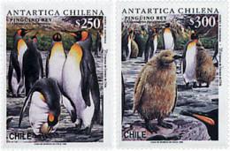 Ref. 32910 * NEW *  - CHILE . 1996. FAUNA OF THE CHILEAN ANTARCTICA. FAUNA DE LA ANTARTIDA CHILENA - Chile