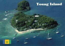 1 AK Young Island - Saint Vincent And The Grenadines * Blick Auf Young Island Und Oben Die Kleine Insel Duvernette * - Saint-Vincent-et-les Grenadines