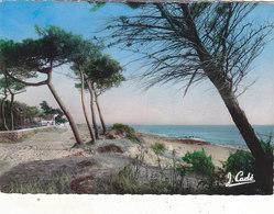 ST. BREVIN :CHEMIN DES HOTELS.CPSM G.F.DE 1954.N° 14.T.B.ETAT.PETIT PRIX COMPAREZ!!! - Saint-Brevin-l'Océan