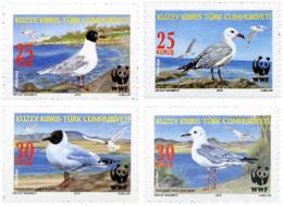 Ref. 253006 * NEW *  - CYPRUS. Turkish Adm. . 2010. BIRDS. AVES - Cyprus (Turkey)