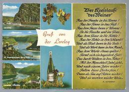 DE.- GRÜSSE Von Der LORELEY. - Gruss Aus.../ Gruesse Aus...