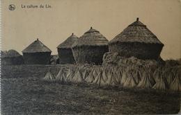 Belgique Au Travail - Culture Du Lin No 11.  // 19?? - België