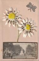 34 / Fleur Avec Petite Vue De Beziers Les Allées - Beziers