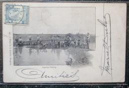 Thailande Siam Natives Fishing Cpa Timbrée Siam 1905 - Thaïlande