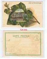 Salut De Constantinople Vue Panoramique De La Mosquee Suleymanie Coloured Postcard UNPOSTED Circa Early 1900s - Turkey
