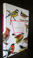 Lot 3 GUIDES Du NATURALISTE: OISEAUX / CHIENS / PLANTES Ed. NATHAN Botanique Fleur Ornithologie Zoologie Veterinaire Dog - Wetenschap
