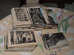 Afrique Du Nord :  Plus De 750 CPA Et CPSM Petit Format  - Environ 3,5 Kg - Lot Sympathique Et Propre - A Voir - Cartes Postales