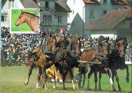"""Schweiz-Suisse 2004:Maximumkarte """"Marché-Concours Saignelégier"""" Zu 1082 Mi 1829 Yv 1755 Mit ET-o SAIGNELÉGIER 6.3.03 - Hippisme"""