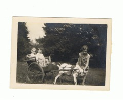 Photo ( +/- 6 X 9 Cm) Attelage Caprin - Petite Charette Avec Enfants Tirée Par Une Chèvre, Peut-être Spa +/- 1928.(b132) - Photos