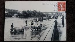 CPA CREIL OISE L ABREUVOIR BOEUF VACHES ANIMATION VELO 1910 ED VANDENHOVE - Creil