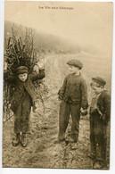 CPA LA VIE AUX CHAMPS  Enfants 1905 - Scènes & Paysages
