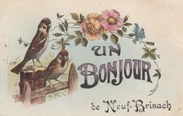 Haut-rhin : NEUF-BRISACH : Un Bonjour De Neuf Brisach ( Moineaux Et Fleurs ) Oiseaux - Neuf Brisach