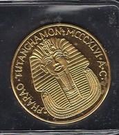 GOLD-MÜNZE - PHARAO TUTAN CHAMON MCCCXIVI.  A.C. REGINA NOFRETETE  MCCCIXIII AGYPTE  2 Scans - Egypte