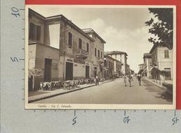 CARTOLINA NV ITALIA - VISERBA DI RIMINI - Via C. Colombo - 10 X 15 - Rimini